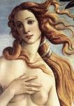 botticelli-la-naissance-de-venus-detail-v-1485.jpg